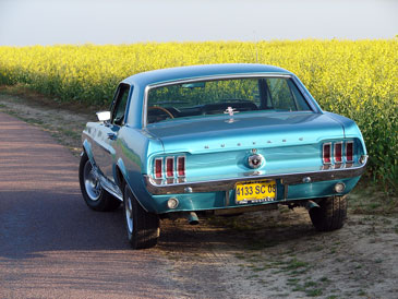 Ford Mustang 289 Ci 1967 1968 Retro