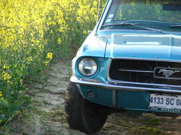 longueur ford falcon 1964